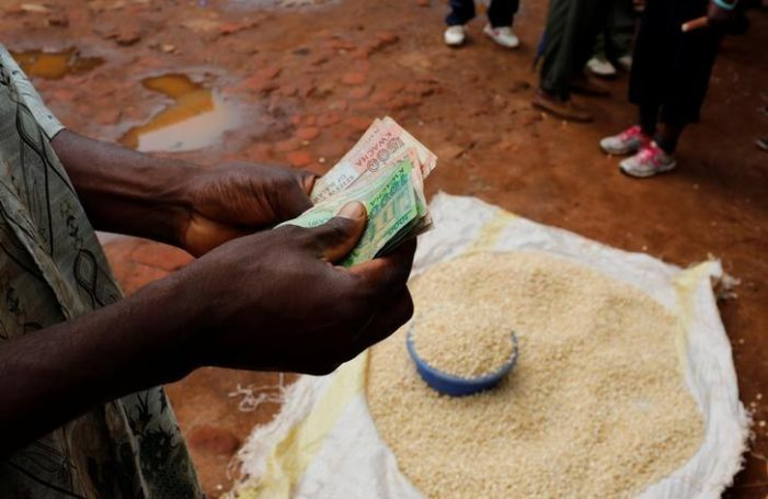 Govt Extends Buying Period For Maize