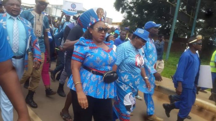DPP Storms Mzuzu: Promises Another Victory In Fresh Elections