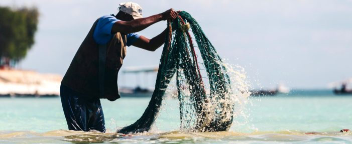 Youth To Venture Into Fisheries, Aquaculture Development