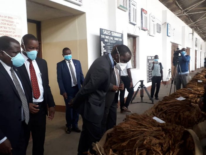 Limbe Tobacco Market Opens On A High Note