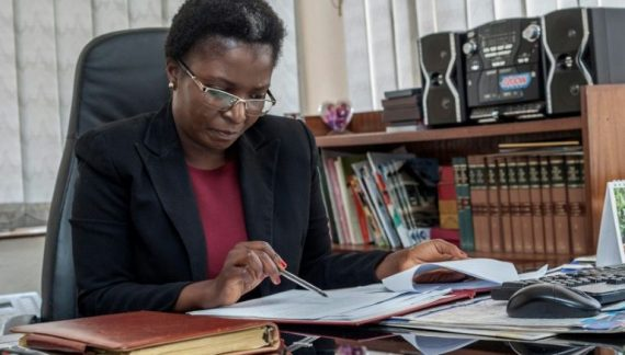 Ombudsman Faults Appointment of Madalitso Mmeta As PPDA Chair