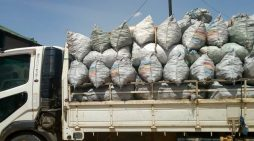 CCAP Livingstonia Synod Implicated In Charcoal Smuggling