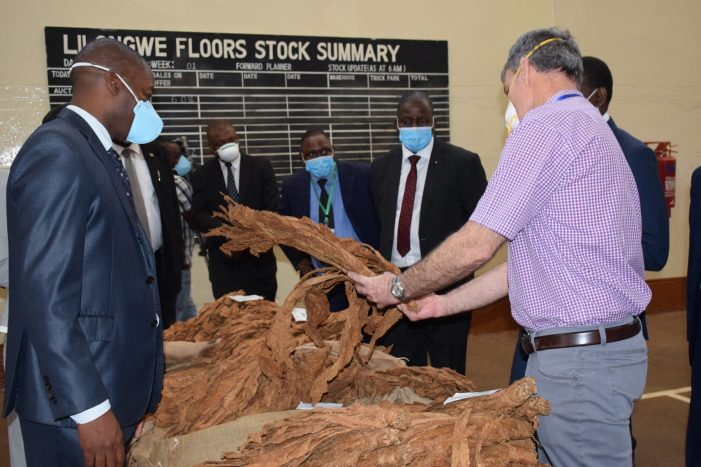 Tobacco Sales Open With New Auction System