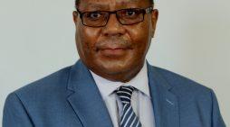 Castel Malawi Exchange Losses Affect PCL Profits