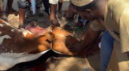 Batatawala Feeds over 2,000 people in Mangochi, Says Malawi needs healing